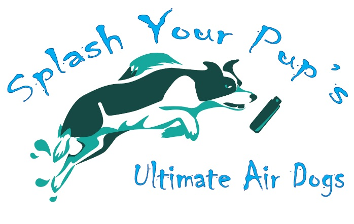 Dog Swimming & Diving Moraine OH - Ultimate Air Dogs | Splash Your Pup - splash_air_finale